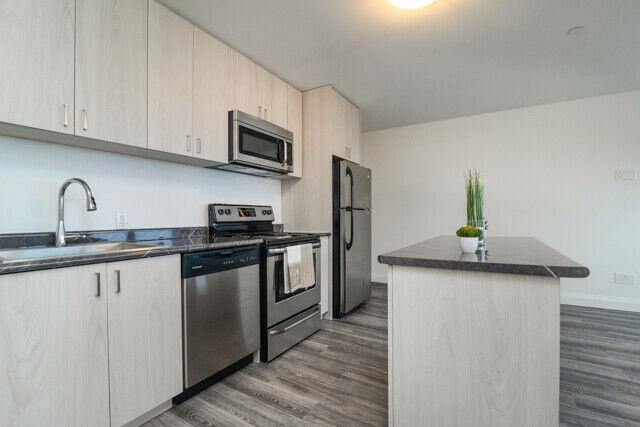 Astounding Bloor Annex Residences 1 Bedroom Apartment For Rent 7 Download Free Architecture Designs Sospemadebymaigaardcom