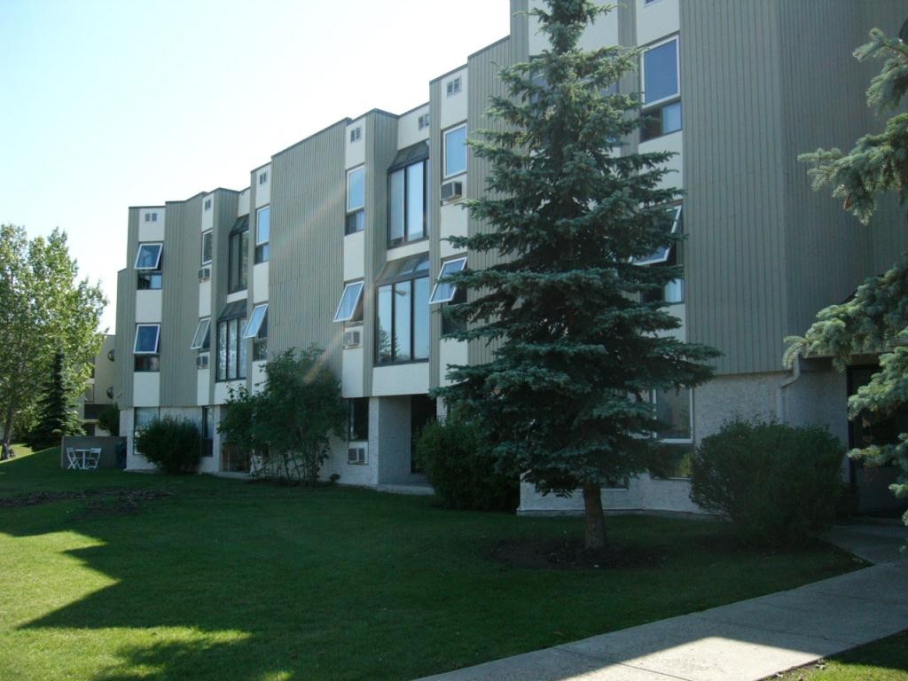 18175 96th Ave Edmonton 1 Bedroom Apartment For Rent