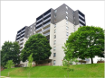 Apartment / Condo / Strata for Rent in 297 Queens Avenue